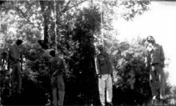 اعدام جوانان و بیگناهان از ۳۲ سال پیش که این رژیم جهنمی سایه شوم خود را بر کشورمان انداخت، و ماشین اعدام این جنایت کاران، همچنان در زندان، و یا بیرون زندان در سراسر ایران ادامه دارد. این بر جوانان ما است که شر این جانوران را از سر مردم ایران کوتاه کنند.