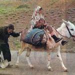از تک تک ایرانیان پاک سرشت برای زدودن هیولای اسلام از تارک کشورمان درخواست اتحاد و همکاری دارد
