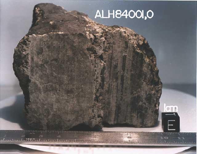 شهاب سنگ ALH 84001 که در سال ۱۹۸۴ در قطب جنوب کشف شده بود، در سال ۱۹۹۶ توجه دانشمندان را به خود جلب کرد چراکه حفره ها و شکل هایی ذره بینی در این شهاب سنگ یافته شد که دانشمندان احتمال می دادند که سنگواره ی (فسیل) میکروب باشد.
