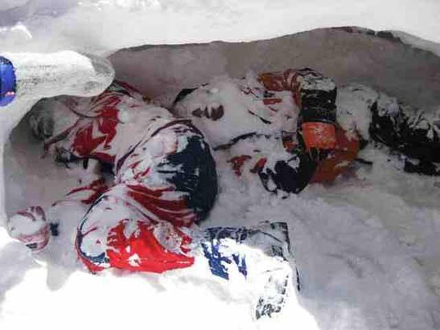 دو ایرانی سرگردان و درمانده که در جنگل های یونان با بی پناهی و بدون پول از شدت سرما جان دادند. بی تردید خامنه ای جنایتکار و شرکای او در هرکدام از کشتار و یا نابودی انسانی سهیم و شریکند.