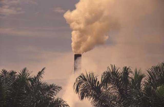 آلودگی هوا در ایران بر اثر سوخت نامناسب، و رعایت نکردن بهداشت موجب بیماری های گوناگون تنفسی و مرگ است. اثر این گازهای سمی در کودکان و پیران بیشتر و واضح تر است.
