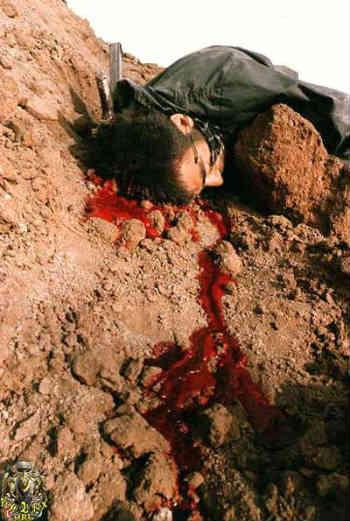فرتور یکی از قهرمانانِ گمنامِ میهن مان را نشان می دهد که جانش را برای دفاع از خاک پاک کشورمان، در جنگ با عراق از دست داده است؛ ایران هنوز نیز لبریز از جوانمردان و شیر زنانی است که حاضرند برای حفظ وطن شان از جان گذشتگی کنند.