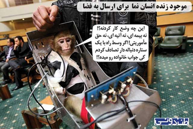 میمون در مانده از دستت آخوند، نسبت به آینده خود نگران است، و گله گذاری می کند!.