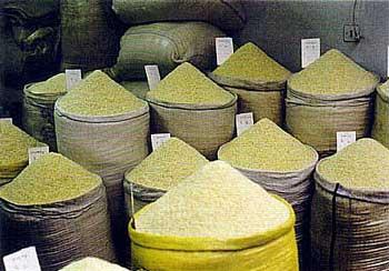 امروزه به برنج باسماتی نیز نمی توان اطمینان و اعتماد داشت. امکان آلودگی آن زیاد است.