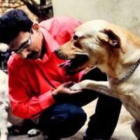 ما ملت اسلام زده باید از سگ ها، وفاداری و خدمتگذاری یادبگیریم تا دشمنی به همدیگر