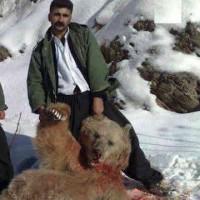 کُشتنِ حیوانات بَرای تَفریح شکار نیست، اوجِ تَوحُش و رذالت است!