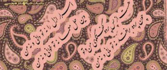 خواندن و لذت بردن از اشعار و نگاشته های شاعران بسیار کردار زیبایی است اما استناد به اشعار و ضرب المثل ها در گفتگوهای منطقی، بسیار نا به جا و به دور از خرد است.