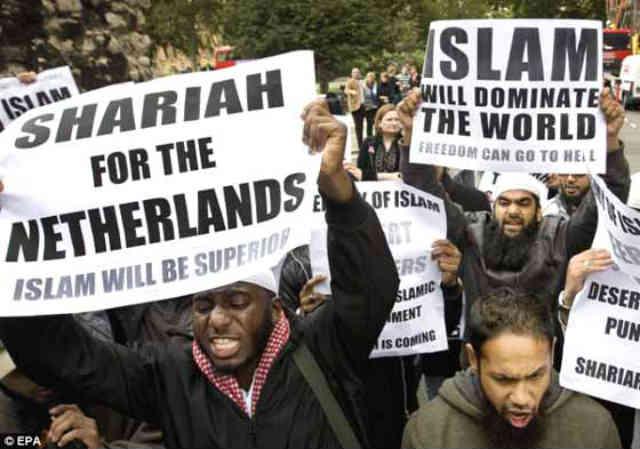 مسلمانان هلند گویا یونجه شان زیاد شده و این روزها شهروندان هلند را به دلیل خوردن گوشت خوک و نوشیدن الکل آزار می دهند!