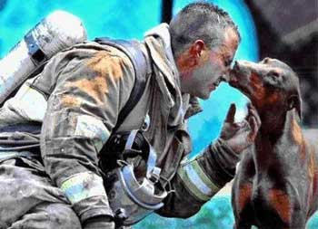 """سگی که به وسیله فردی از زیر آوار نجات یافته، نجات دهنده خود را می بوید و می بوسد. آیا مهربان تر و با وفاتر از سگ دیده اید؟. یادواره فارسی می گوید: """" فلاانی، سگش از خودش بهتر است!."""""""