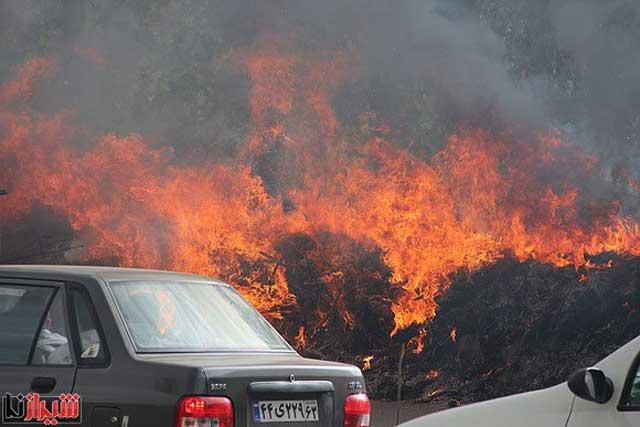 مالکان بی انصاف و ضد ایرانی با همکاری استاندار و شهردار شیراز منطقه باغ های باشکوه قصردشت را سوزاندند، درختان را از بین بردند، و به آپارتمان سازی تبدیل نمودند.