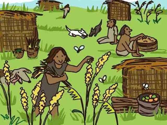 انسان در دوران پیش از تاریخ برای زندگی خود از گیاهان و دانه های گیاهی و آنچه را در دسترس داشت استفاده میکرد.