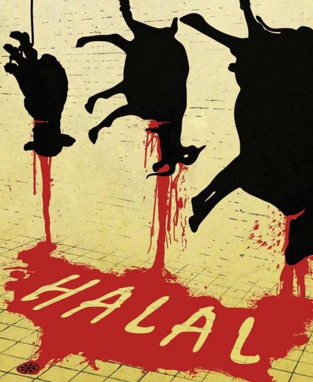 """به دنیای اسلام خوش آمدید. اسلام زجر دادن حیوانات و خونریزی را روش """"کشتار حلال"""" می داند. وقتی که شما گوشت حلال می خورید بدانین که حیوانی زبان بسته و بی دفاع در دست جلاد اسلامی به سختی جان داده و تا مدتها زجر کشیده است."""
