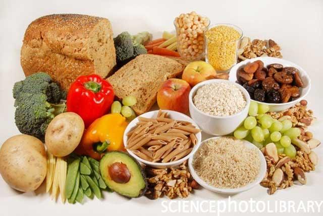 شماری از غذاهای فایبر که درون اب بدن حل نشده درون معده و سرتاسر روده ها موجب حرکت مواد زائد از بدن می شوند. بنابراین، در هضم غذا عامل بزرگی به شمار می آیند.
