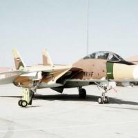 (هواپیماهای بسیار دوربرد اف-14 خریداری شده پیش از انقلاب با خلبانان زبده ی ایرانی پرواز می کردند و رویای صدام را برای فتح تهران در یک ماه به باد دادند...)