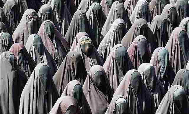 فرتور یک عده زن مسلمان را با پوشش اسلامی نشان میدهد، گویی یک دسته کلاغ سیاه روی کابل برق یا شاخه درخت نشسته اند! این برابری و عدالت موجود در اسلام و همچنین نشان دهنده یکسان بودن زنان و مردان در احکام ننگین اسلامی است.!