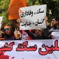 ایرانیان خود کَمر به نابودی فرهنگ، زیست بوم و مملکت شان بَسته اند!