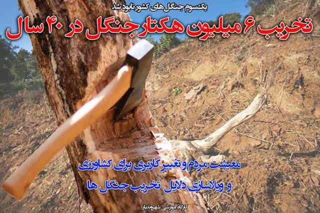 در طی چهار دهه گذشته، شش میلیون هکتار از جنگل های کشور ویران شده است! نقش مردم ایران در این فاجعه زیست بومی، چه بوده است؟