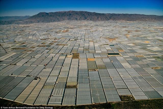 در آلمریا اسپانیا تا چشم کار می کندمنطقه زیر کشت و گلخانه دیده می شود.