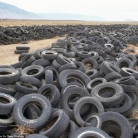 End of the road for these tires is a desert dumping ground in Nevada, U.S.A