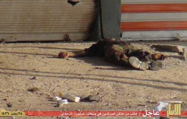 پیکر های بی جان کشته شدگان حمله داعش به شهر رمادی در خیابان ها پراکنده گشته و یا به درون رودخانه پرتاب شدند.