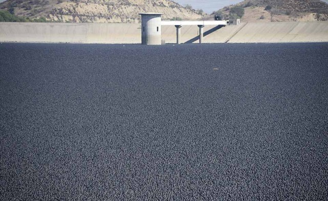 میلیون ها توپ سیاه رنگی که سطح آبشخور بزرگی در کالیفرنیا را پوشانده و مانع تبیخیر آب آن و نزدیک شدن حیوانات و آلوده کردن آب آن می شود.