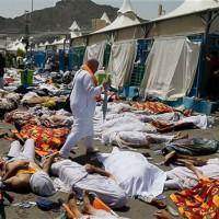 اجساد بیش از ۱۲۰۰ نفر از زائران حدود ۲۰ کشور در سردخانه مکه قرار دارد. همچنین حدود ۲۱ کانتینر حاوی اجساد حجاج در انتظار شناسایی هستند. گفته میشود در هر کانتینر حدود ۱۰۰ تا ۱۵۰ جسد وجود دارد.