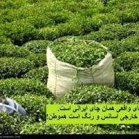 لزوم جایگزینی مزارع برنج کل کشور با محصولات سود آور دیگر