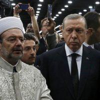 سر انجام عدم استقلال ارتش و پوپولیسم حکومتی را 37 سال است در ایران می بینیم. ابزار دین بخوبی در ایران استفاده شد تا کار بجایی رسید که در ایران نه مجلسی و نه دادگاهی و نه ارتشی مانده است و تنها نیروی حاکمه مقام ولی فقیه است. روند فعلی در ترکیه در مقیاس کوچکتر می تواند هشدار بروز یک جمهوری اسلامی را بدهد. حکومتی که ارتش و مجلس و دادگاهش بی معنی شده باشد و تنها شخص اردوغان و حزب او تصمیم گیرنده هستند. این یکسو گرایی و تک حزبی شدن می تواند سرانجام بسیار ناخوشی برای ترکیه داشته باشد.