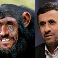 سيرك انتصابات، شامپانزه اش هم آمد!